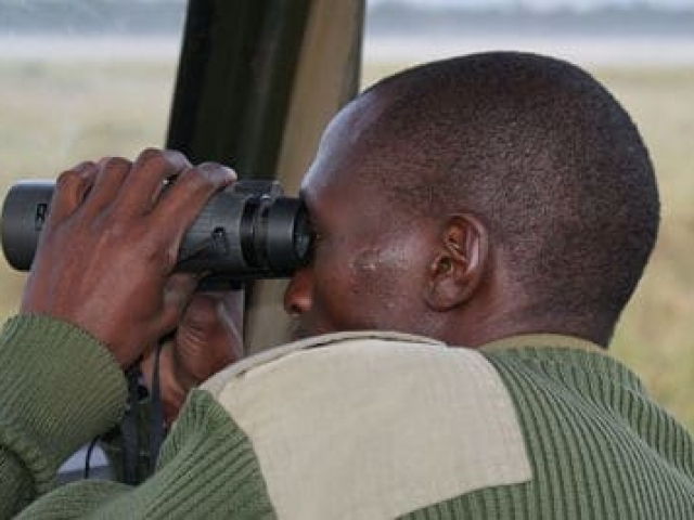 kenya travel photos maasai mara tour guide